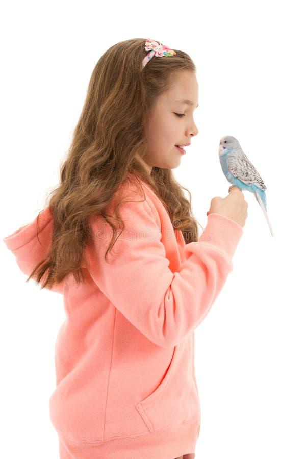 Meisje met haar gezelschapsvogelgrasparkiet royalty-vrije stock fotografie
