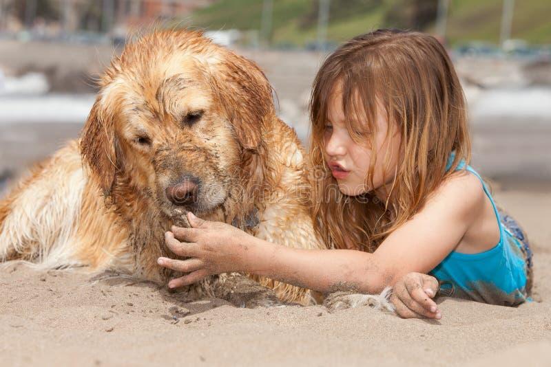 Meisje met honden bij het strand stock foto's