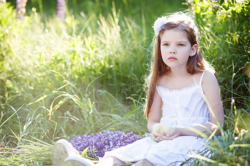 Meisje met kip royalty-vrije stock foto's