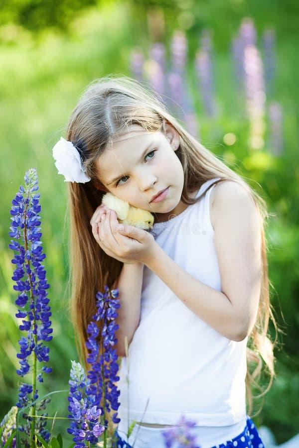 Meisje met kip royalty-vrije stock fotografie