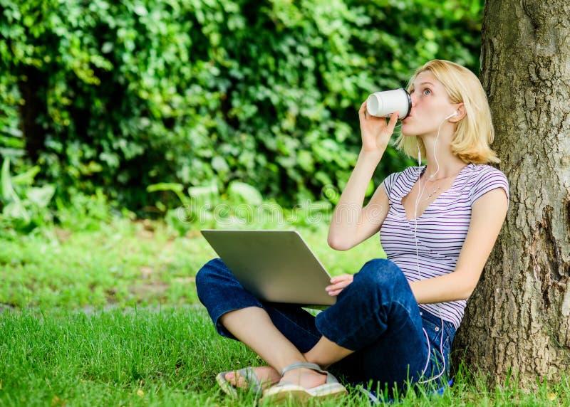 Meisje met laptop de zomer online Blogger leidt tot inhoud voor sociaal netwerk de vrouw heeft online zaken Webmededeling royalty-vrije stock afbeeldingen