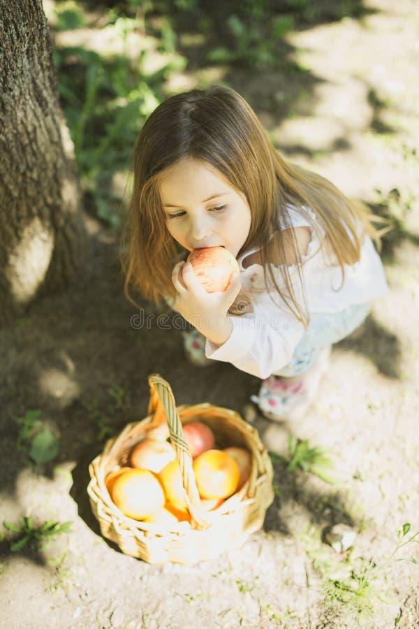Meisje met mand fruit stock foto