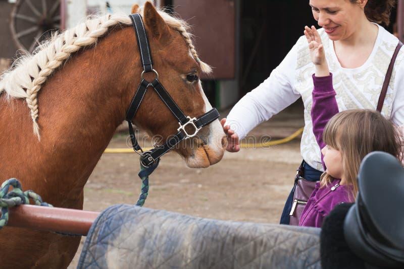 Meisje met moeder en bruin paard royalty-vrije stock afbeelding