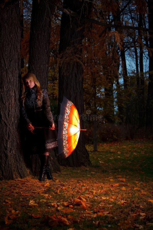 Meisje met paraplu in de herfstpark stock afbeeldingen