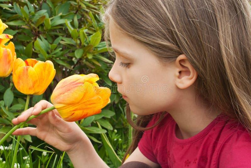 Meisje met tulp royalty-vrije stock foto