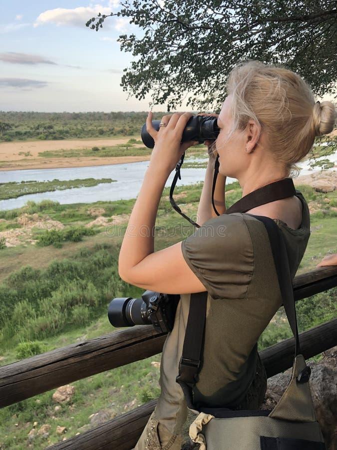 Meisje met verrekijkers op safari royalty-vrije stock fotografie