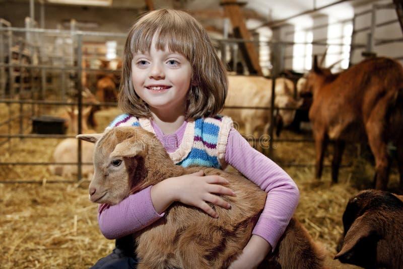 Meisje met weinig bruin jong geitje stock afbeelding