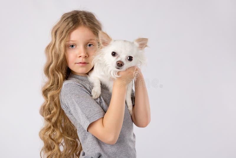 Meisje met witte die chihuahuahond op witte achtergrond wordt geïsoleerd De vriendschap van het jonge geitjeshuisdier royalty-vrije stock foto