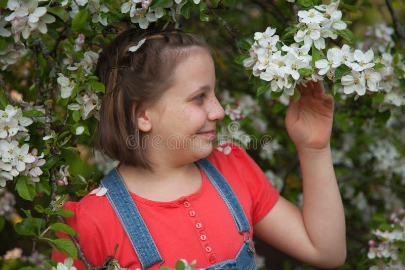 Meisje onder een bloeiende appelboom royalty-vrije stock fotografie