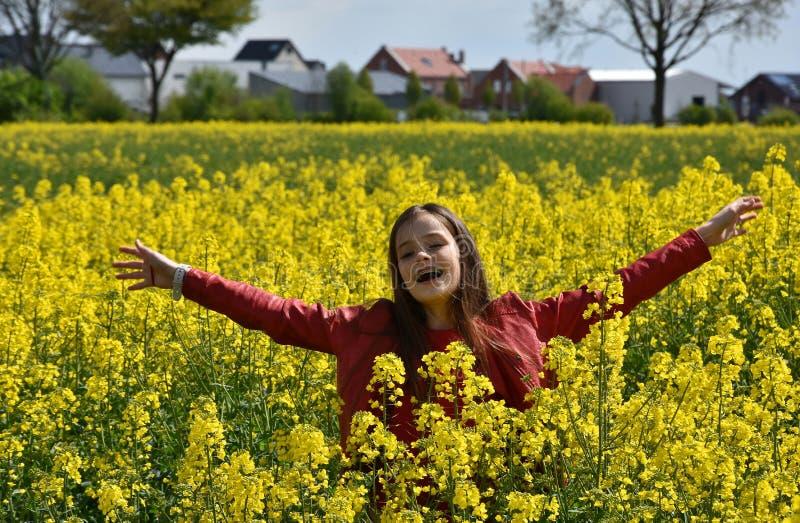 Meisje op canolagebied royalty-vrije stock foto