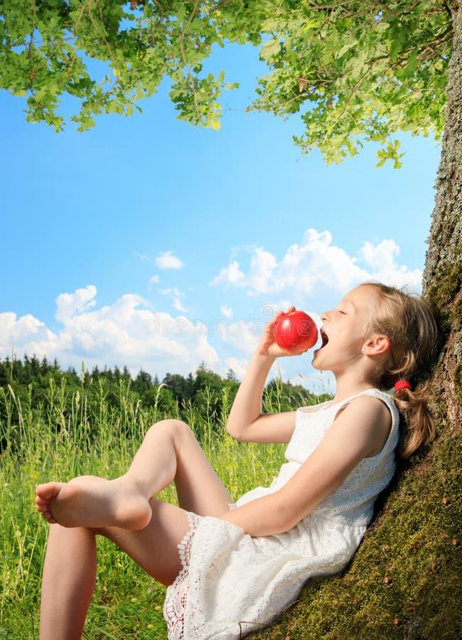 Meisje op een boom stock foto's