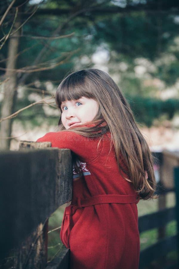 Meisje op een omheining royalty-vrije stock fotografie