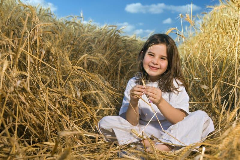 Meisje op een tarwegebied royalty-vrije stock fotografie