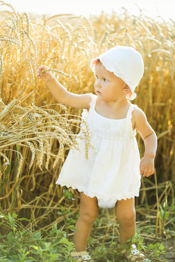 Meisje op een tarwegebied stock afbeelding