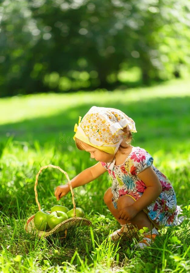 Meisje op gras met mand van appelen royalty-vrije stock foto's