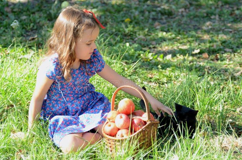 Meisje op het gras met een mand van appelen stock afbeelding