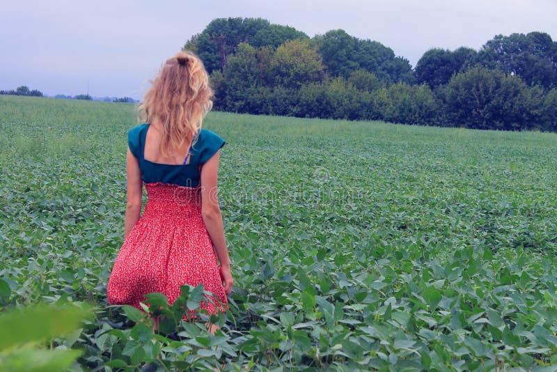 Meisje op het groene gebied die de afstand onderzoeken stock fotografie