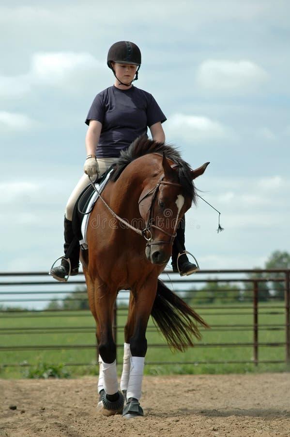 Meisje op Paard stock foto's
