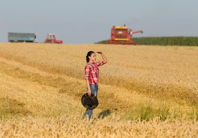 Meisje op tarwegebied tijdens oogst stock fotografie