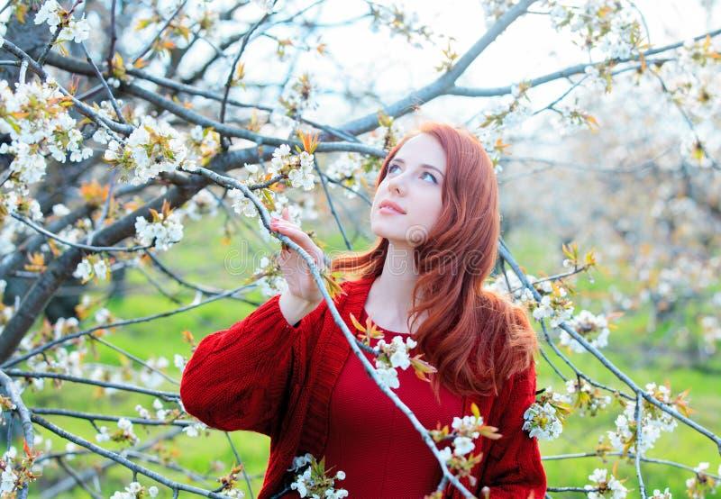 Meisje in rode kleren in de tuin van de bloesemkers royalty-vrije stock foto's