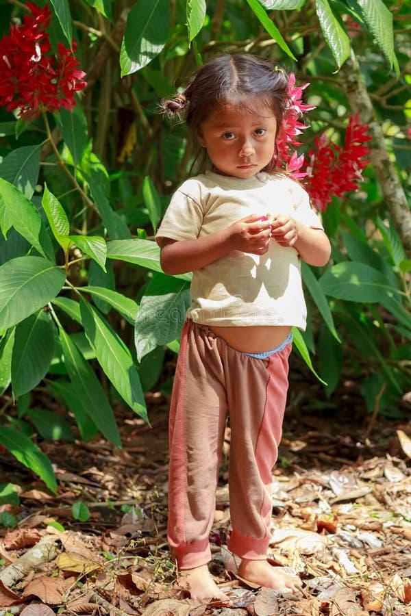 Meisje uit de Amazone royalty-vrije stock fotografie