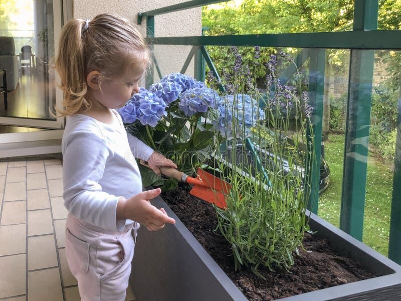 Meisje van 3 jaar oude installatiebloemen op het balkon royalty-vrije stock foto's