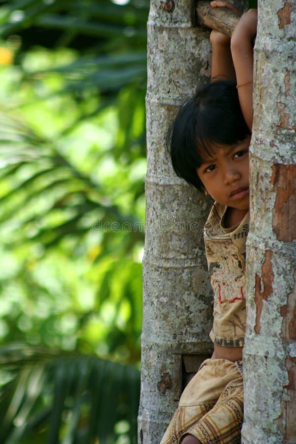 Meisje van Lombok stock afbeelding