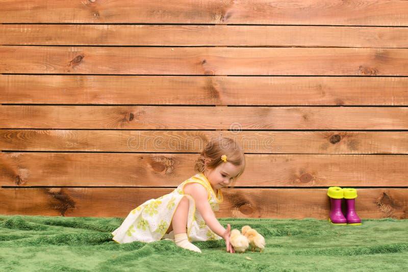 Meisje voedende kippen royalty-vrije stock foto's