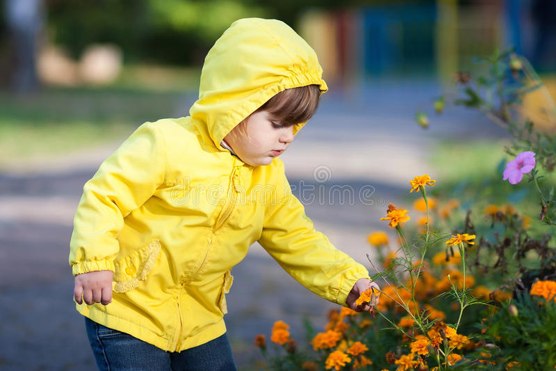 Meisje wat betreft bloemen royalty-vrije stock afbeelding