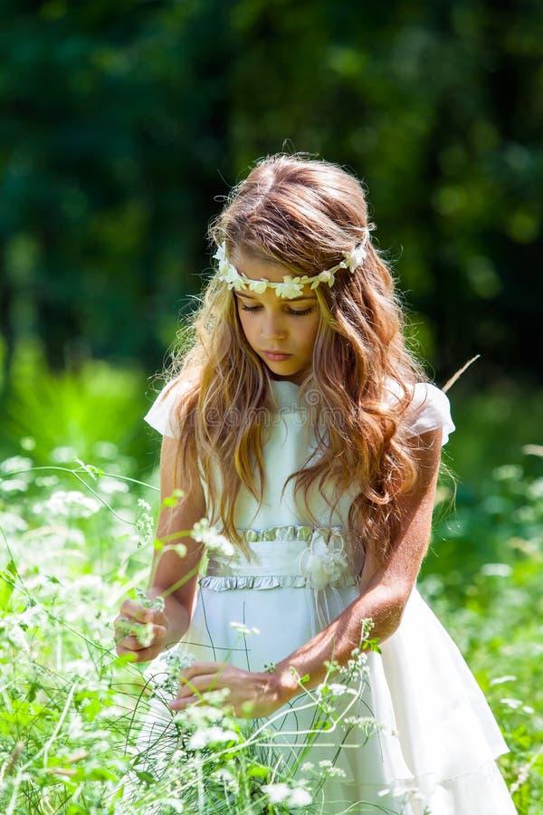 Meisje in witte kleding het plukken bloemen. stock afbeeldingen