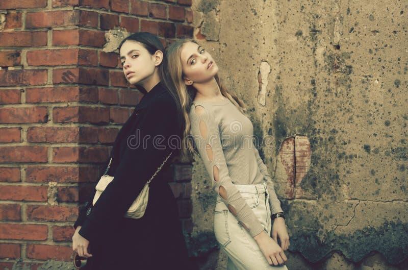 Meisjes dichtbij baksteen geweven muur, schoonheid en manier stock afbeeldingen