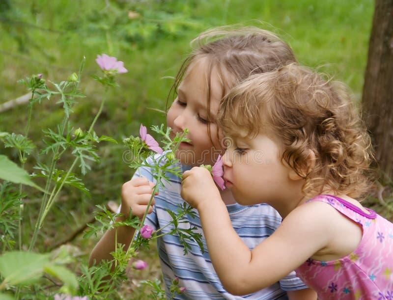 Meisjes die bloemen ruiken stock foto
