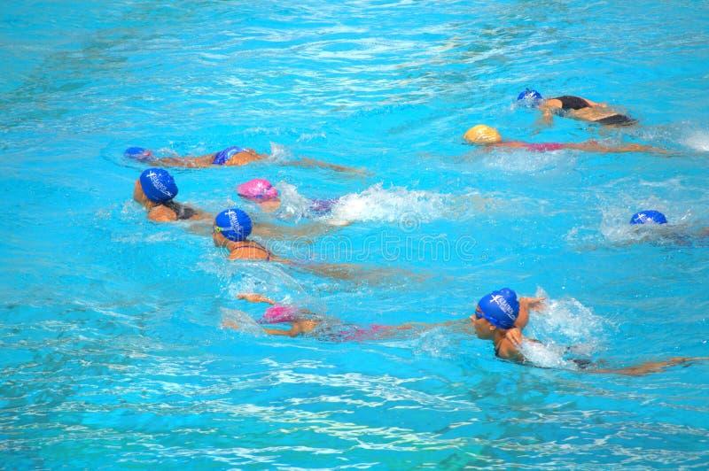 Meisjes die de concurrentie zwemmen royalty-vrije stock afbeelding