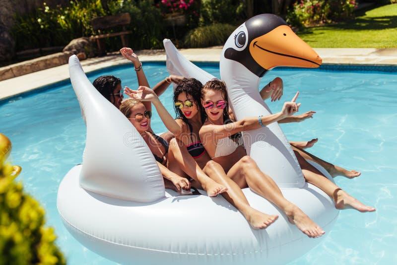 Meisjes die pret op drijvend stuk speelgoed in zwembad hebben stock foto