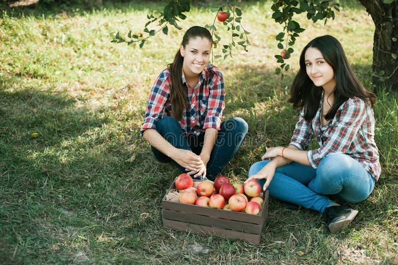 Meisjes met Apple in de Apple-Boomgaard royalty-vrije stock afbeeldingen