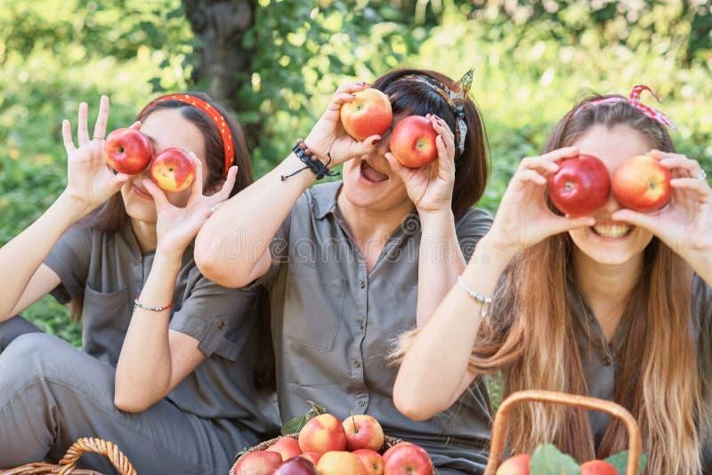 Meisjes met Apple in de Apple-Boomgaard Mooie zusters met Organisch Apple in de Boomgaard Het concept van de oogst De herfst verl royalty-vrije stock foto's