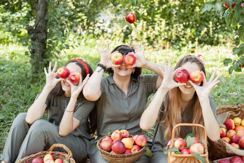 Meisjes met Apple in de Apple Orchard Mooie zussen met Organic Apple in de Orchard Oogstconcept Tuinen, tieners royalty-vrije stock foto's