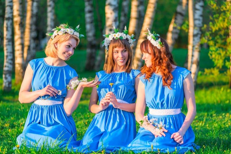 Meisjes met kronen op hun hoofden, die op een gras zitten stock afbeeldingen