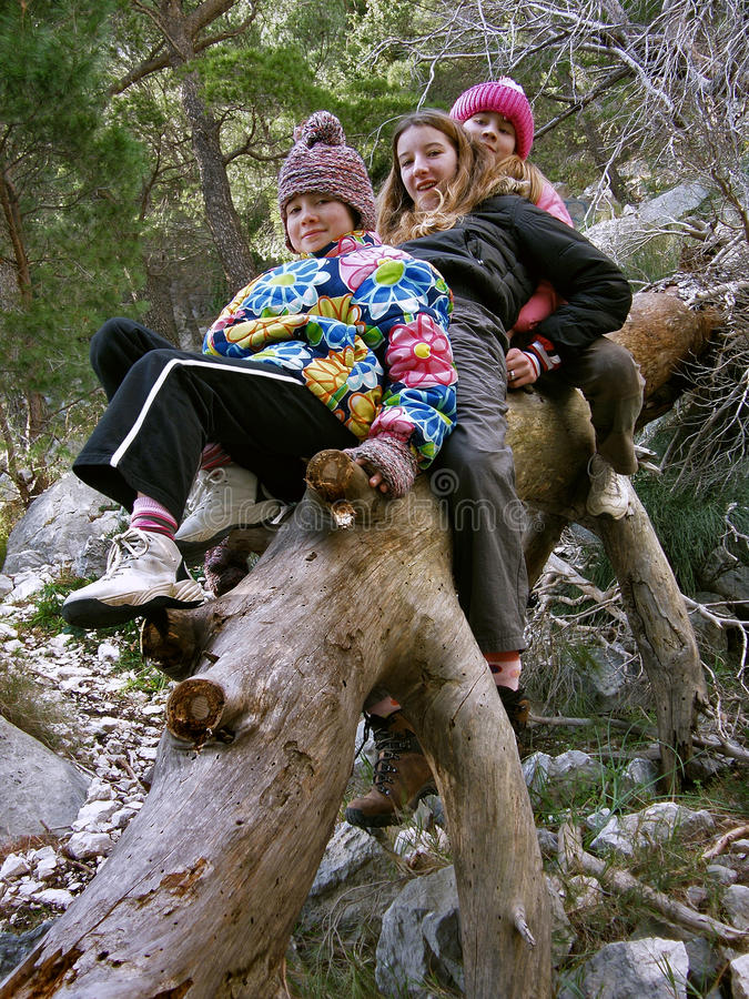 Meisjes op bomen royalty-vrije stock afbeeldingen