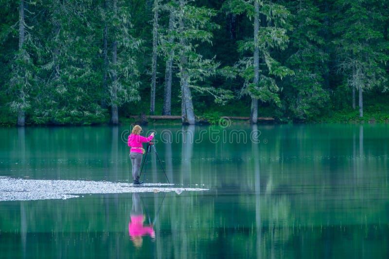 Meisjesfotograaf op Forest Lake stock afbeeldingen
