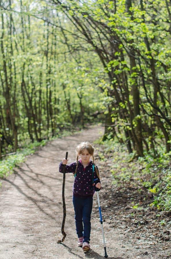 Meisjesgang of stijging door het bos in de vroege lente stock afbeeldingen