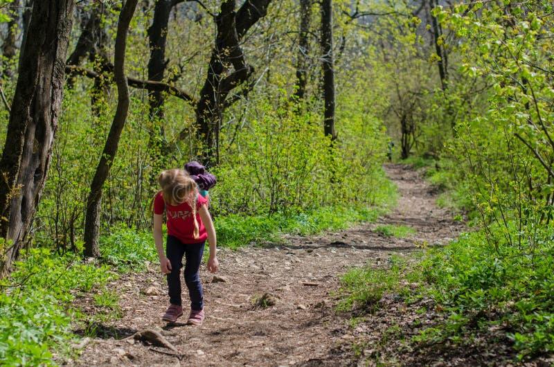 Meisjesgang of stijging door het bos in de vroege lente royalty-vrije stock afbeelding