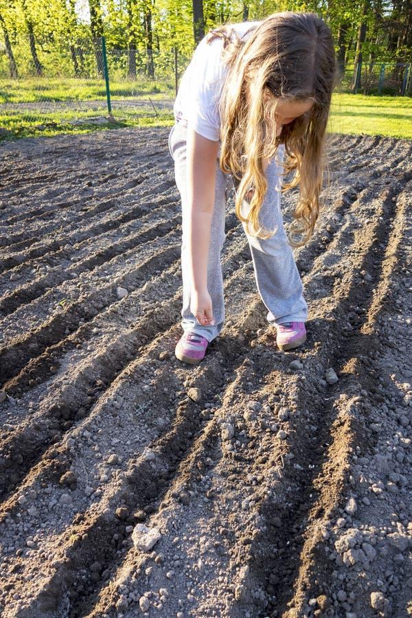 Meisjeskind het Planten stock afbeelding