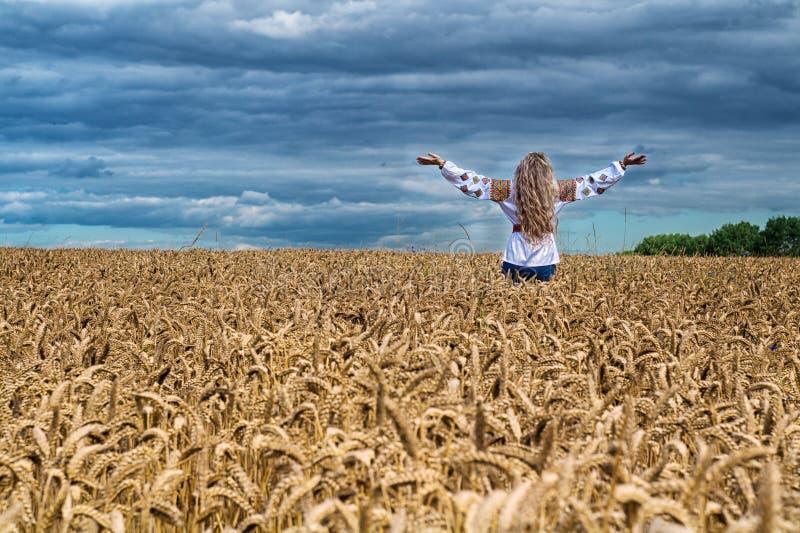 Meisjesstijging omhoog onder het tarwegebied royalty-vrije stock foto