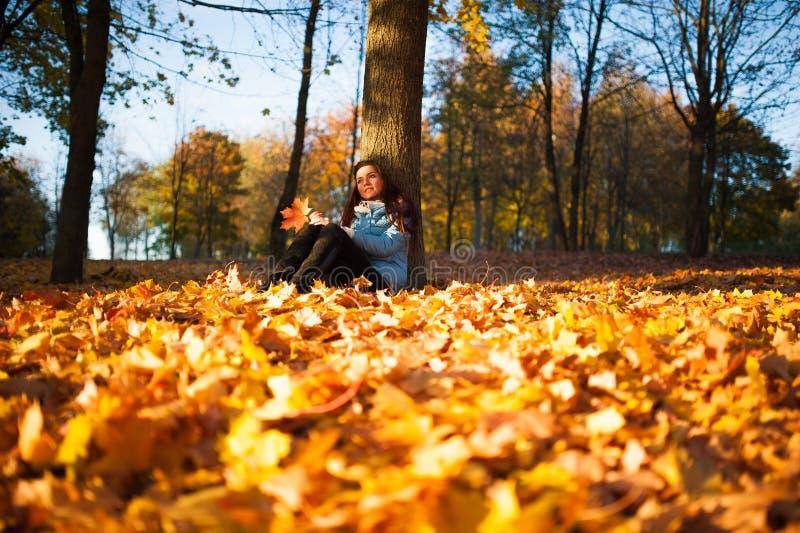 Meisjeszitting in het de herfstpark Mooie jonge donkerbruine zitting op gevallen de herfstbladeren in het park royalty-vrije stock afbeelding