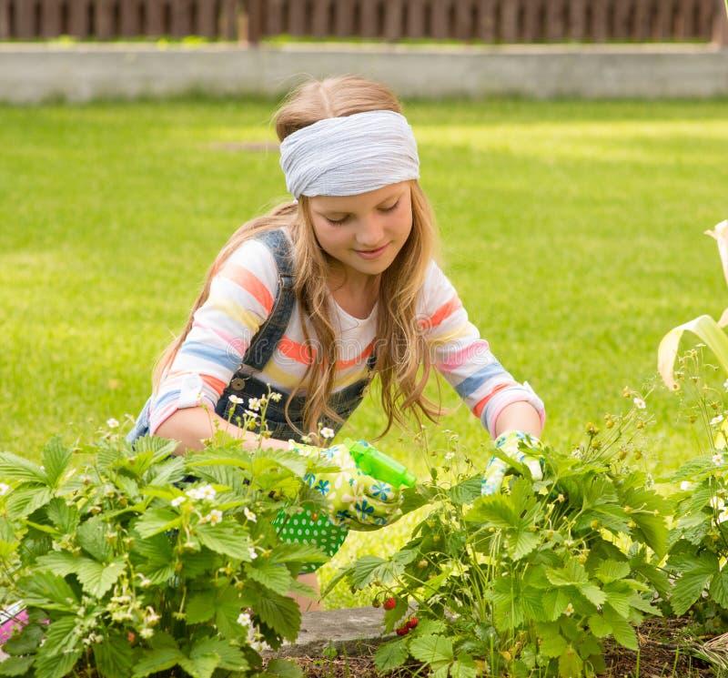 Meisjeszorgen voor de installaties in de tuin royalty-vrije stock foto