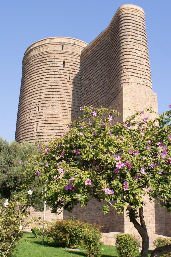 Meisjetoren in oude stad baku azerbaijan stock afbeelding
