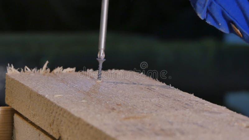 Meister bohrt ein Loch im Brettbohrgerät Schrauben Sie in Holz angetrieben werden Elektrische Bohrmaschine Möbelversammlung Haupt stockbild