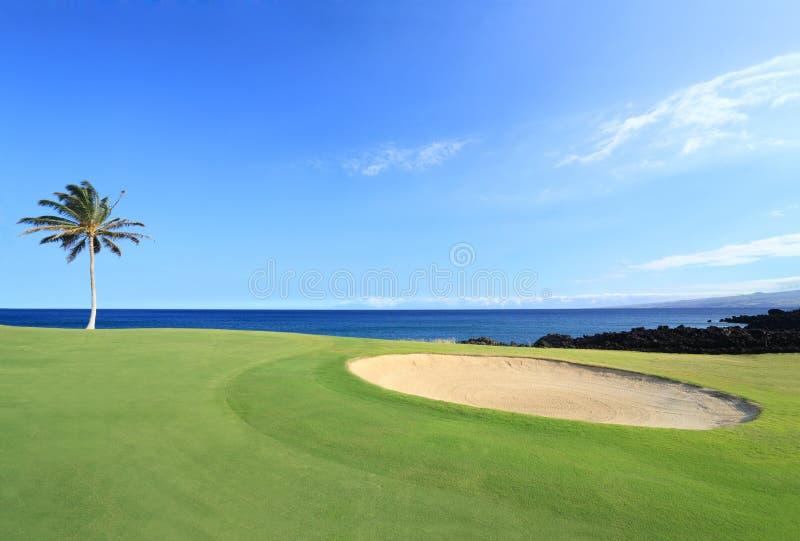 Meister Golfplatz, Hawaii stockfotografie