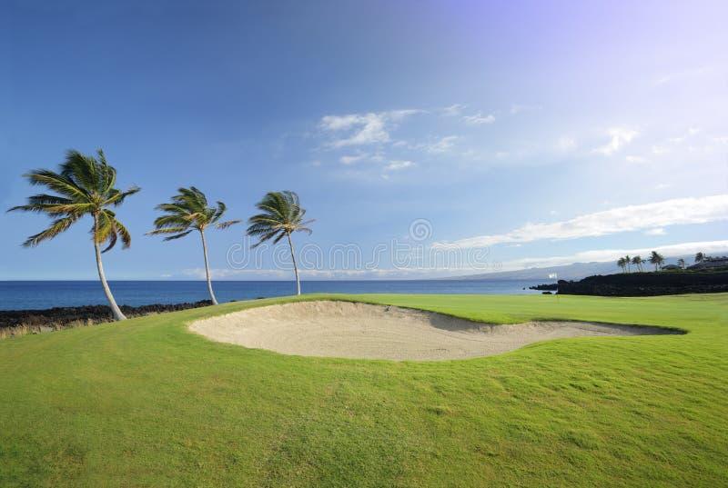 Meister Golfplatz, Hawaii lizenzfreie stockfotografie